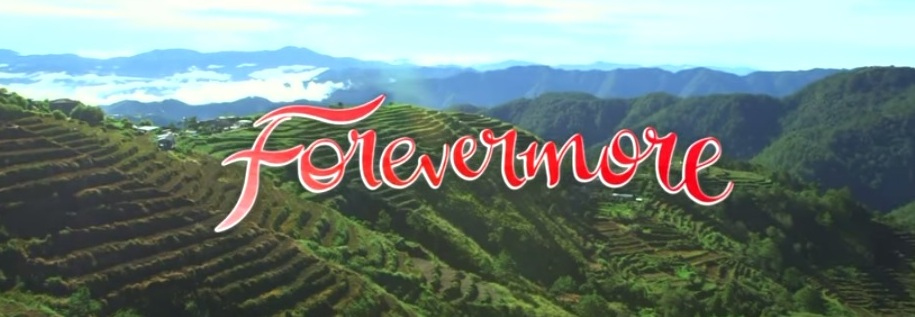 "Five things every ""Forevermore"" fan needs to have"