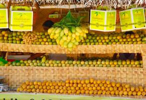 Bountiful mango display at the recent Guimaras Manggahan Festival- a Filipino pride