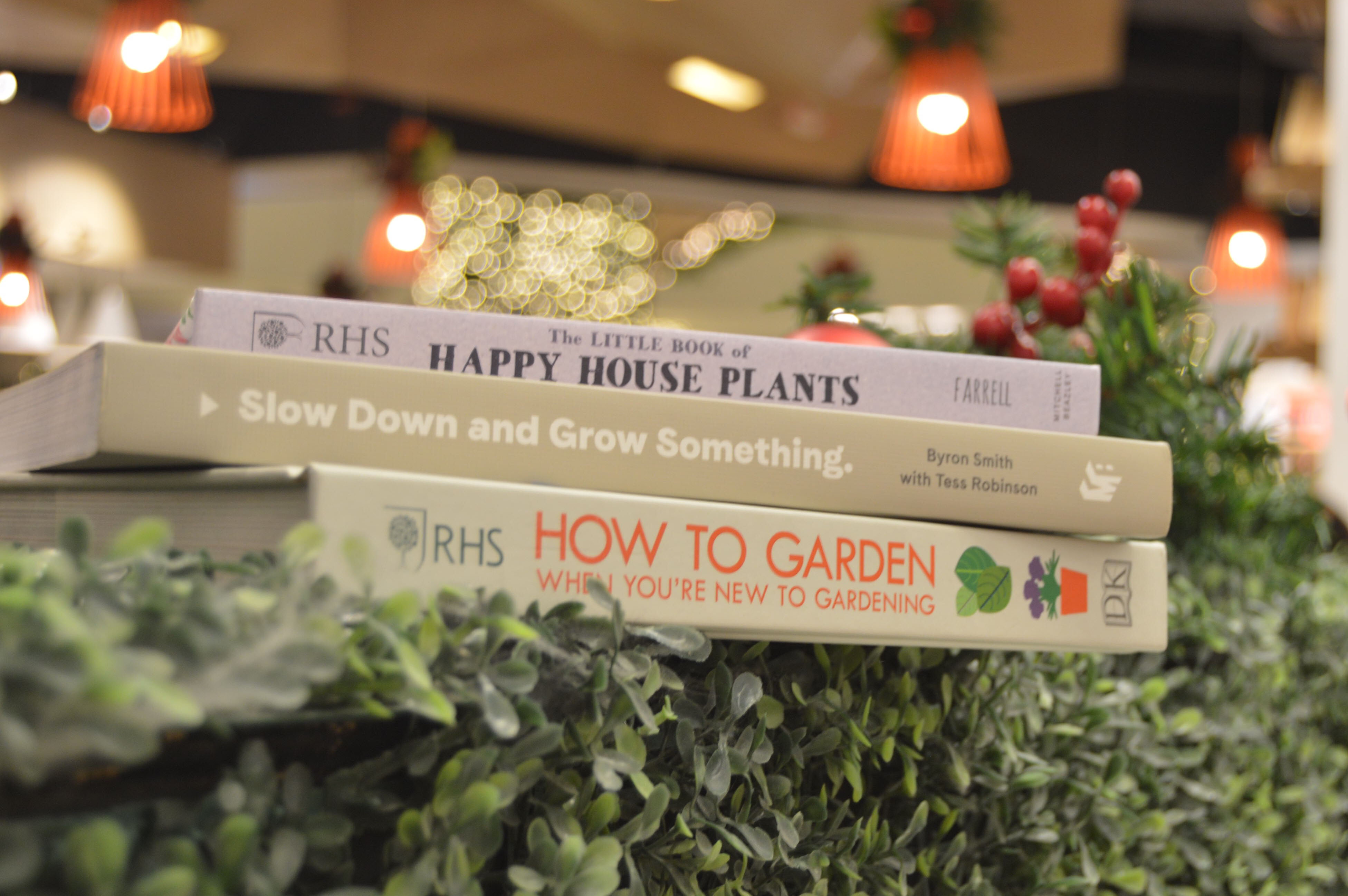 The Rockwellist recommends 'The Little Book of Happy House Plants' by Holly Farrell, 'Slow Down and Grow Something' by Byron Smith with Tess Robinson and 'How to Garden When You're New to Gardening' by The Royal Horticultural Society