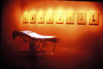 Previous exhibitions 'R(x) Critical Remedies' (2001)