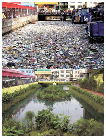 Before and after of Estero de Paco