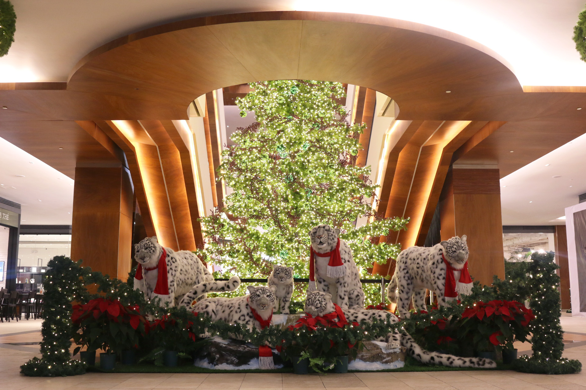Nothing shines brighter than Christmas at Rockwell!
