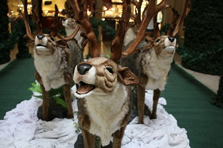 The animatronic reindeer