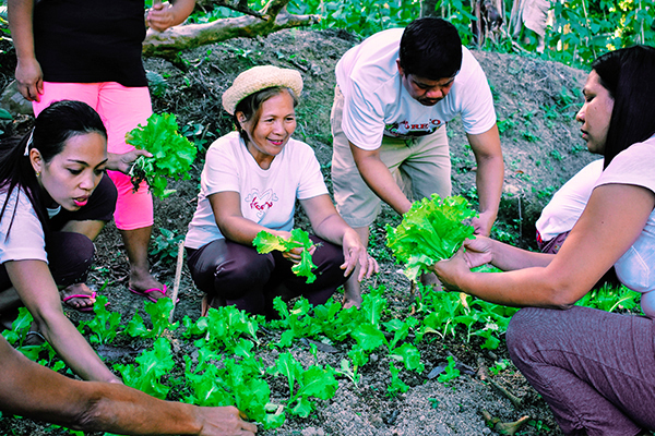 Bulusan workers turn to backyard farming for steady food supply